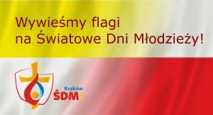 flagi_sdm2016